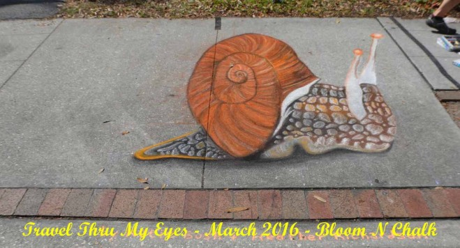 snail chalk art festival