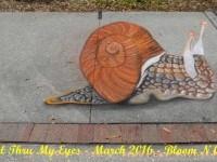 4-snail-chalk-art-festival