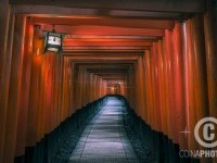 4-tunnel-red-photography-by-david