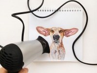 5-interactive-illustration-dog-drawing-idea-by-valerie-susik