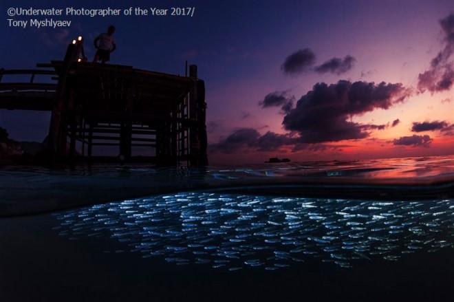 award winning image