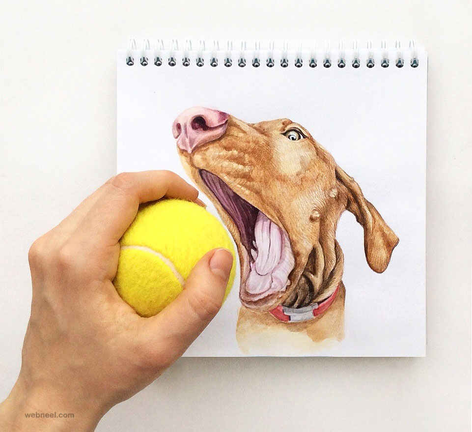 interactive illustration dog drawing idea by valerie susik