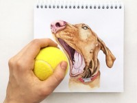 6-interactive-illustration-dog-drawing-idea-by-valerie-susik