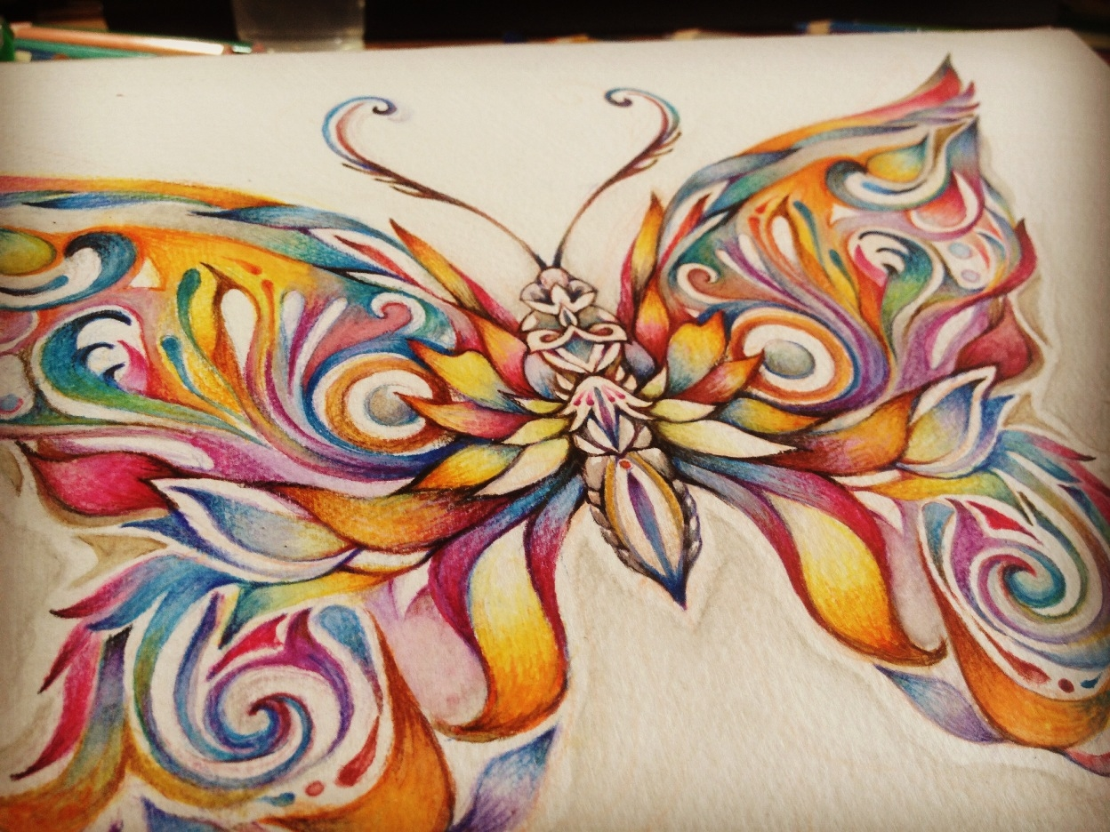 butterfly drawing