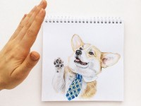 8-interactive-illustration-dog-drawing-idea-by-valerie-susik