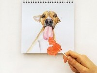 9-interactive-illustration-dog-drawing-idea-by-valerie-susik
