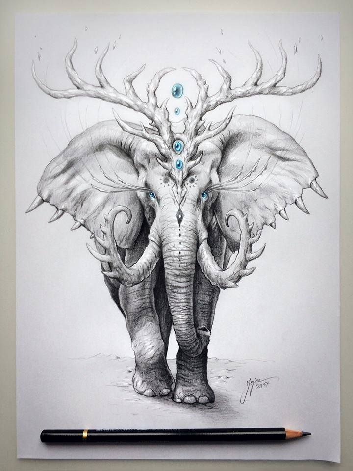 elephant drawing by jojoes art