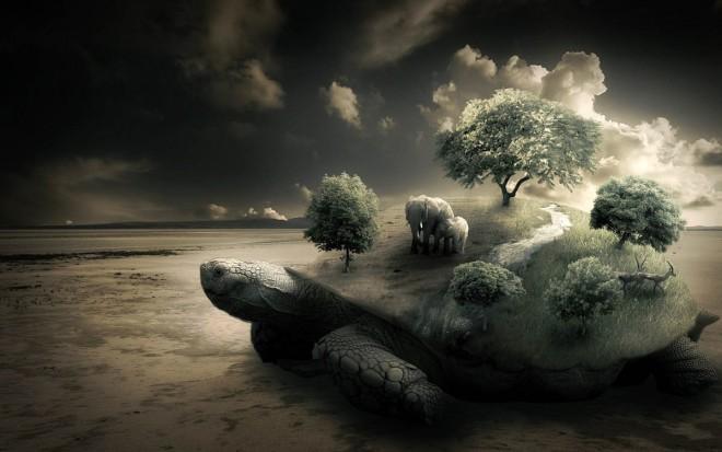 tortoise digital art