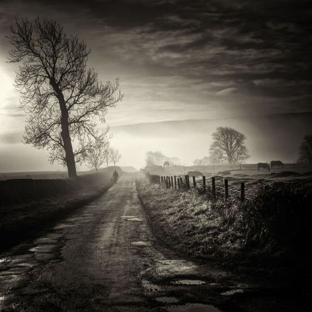 homeward bound scottish photographer by david mould
