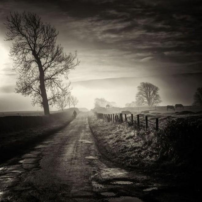 homeward bound scottish photographer by david mould