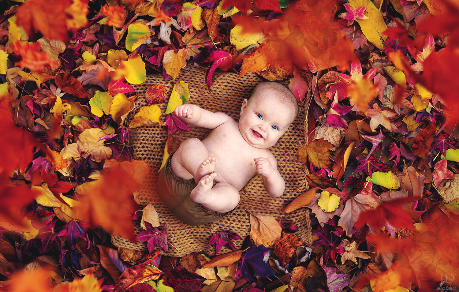 baby portrait photography ideas by jessica drossin