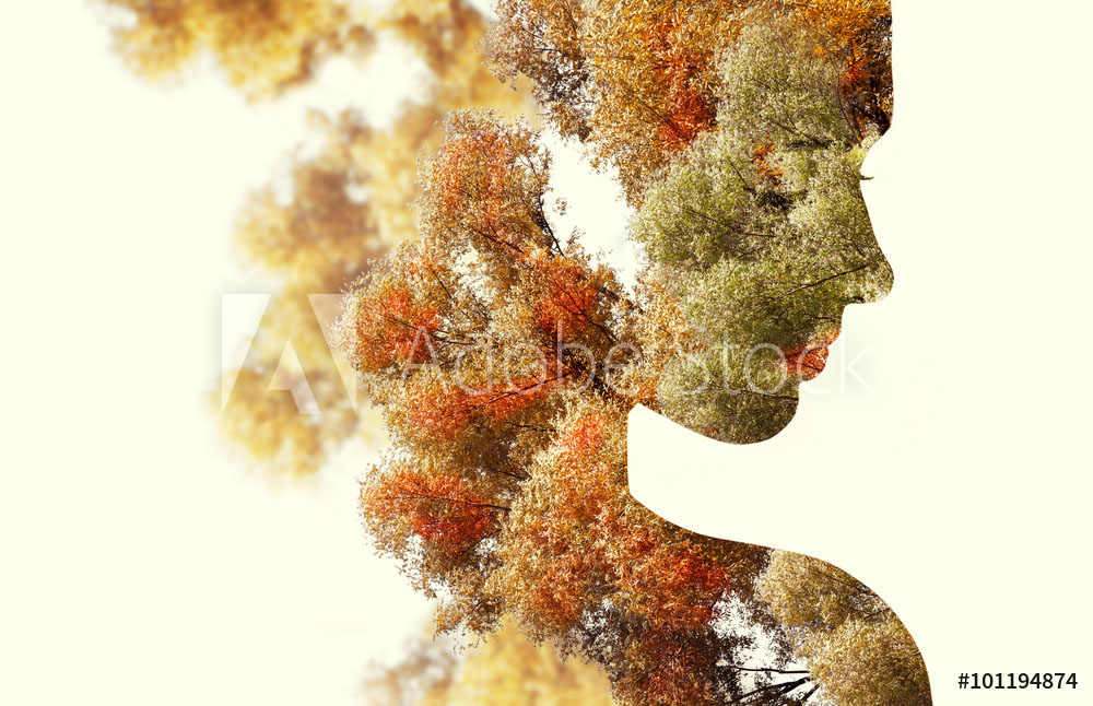 double exposure photography tree