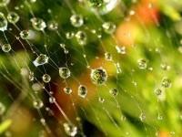 17-rain-photography
