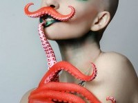 23-octopus-photography-by-jessica-walker