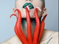 24-octopus-photography-by-jessica-walker