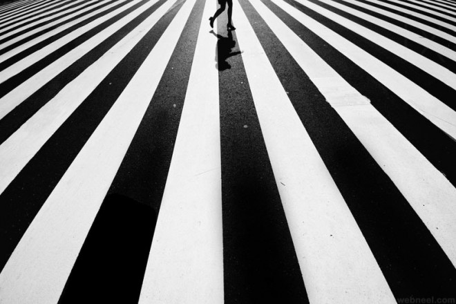 Stripe black and white photography
