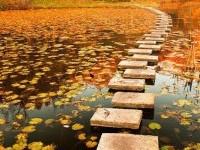autumn-walkway-poland