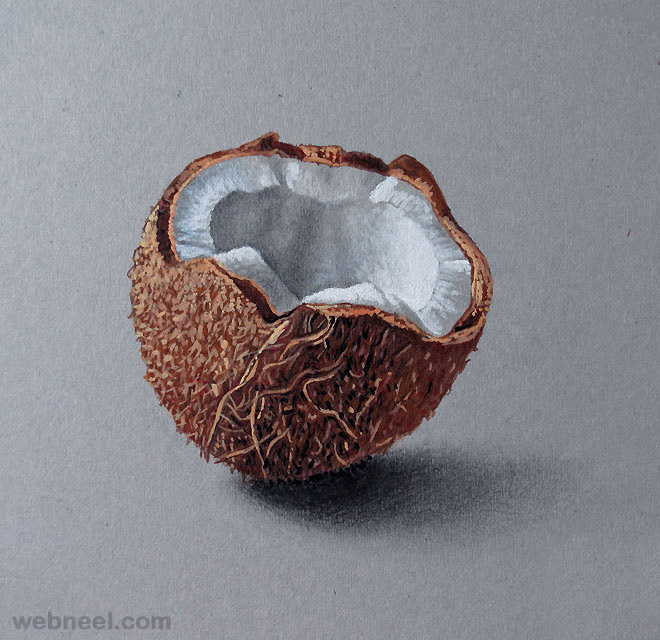 realistic color pencil drawing