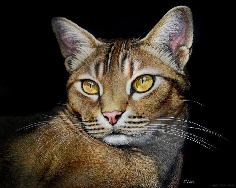 cat animal painting
