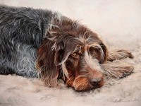17-watercolor-dog-paintings-by-atelierarends