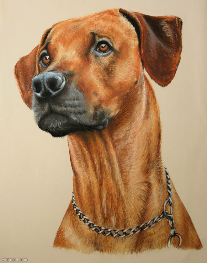 dog pastel drawing by escykane