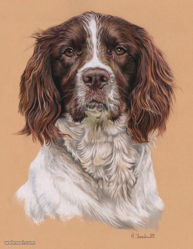 dog drawing by utlah