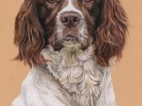 20-dog-drawing-by-utlah