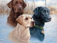 8-dog-painting-by-killen