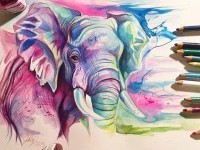 elephant-painting-by-katy-lipscomb