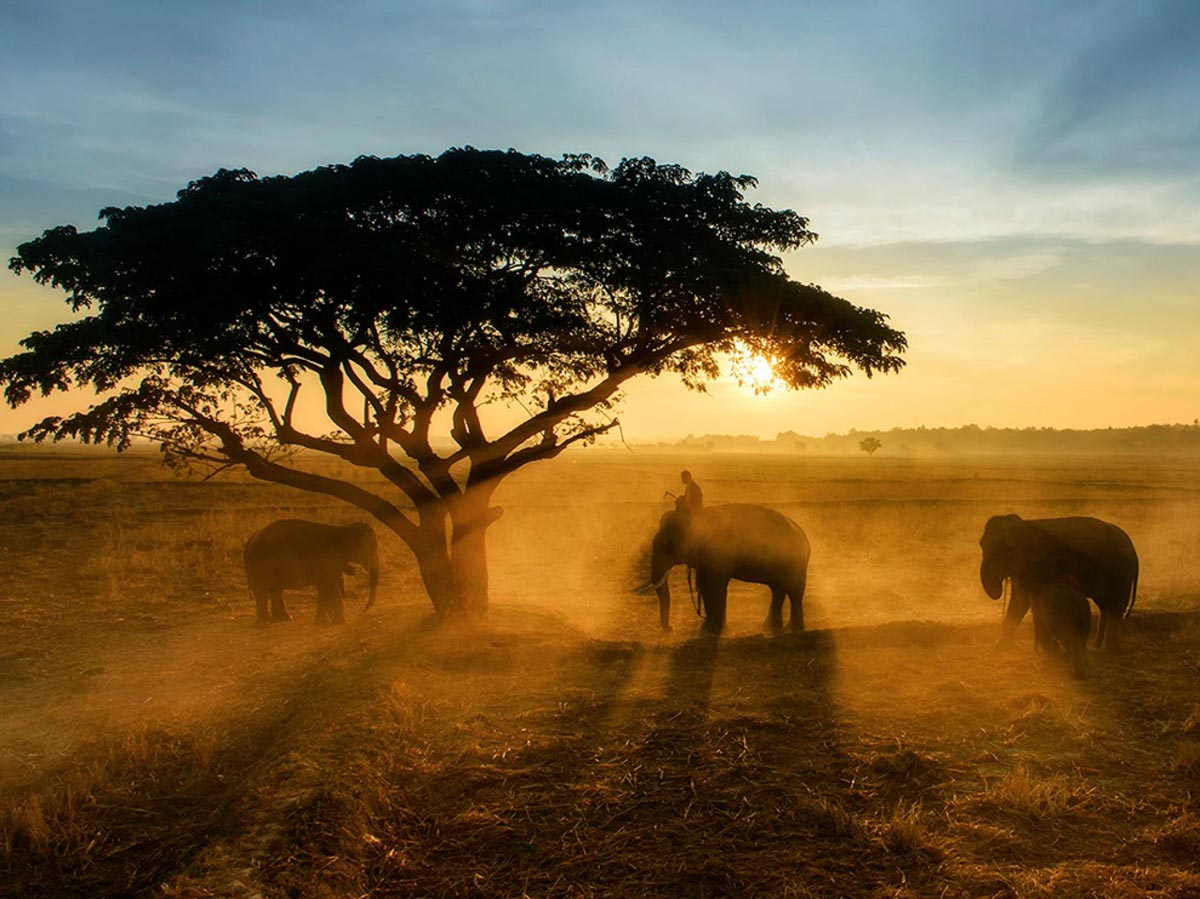 shake dust landscape photography by national geographic