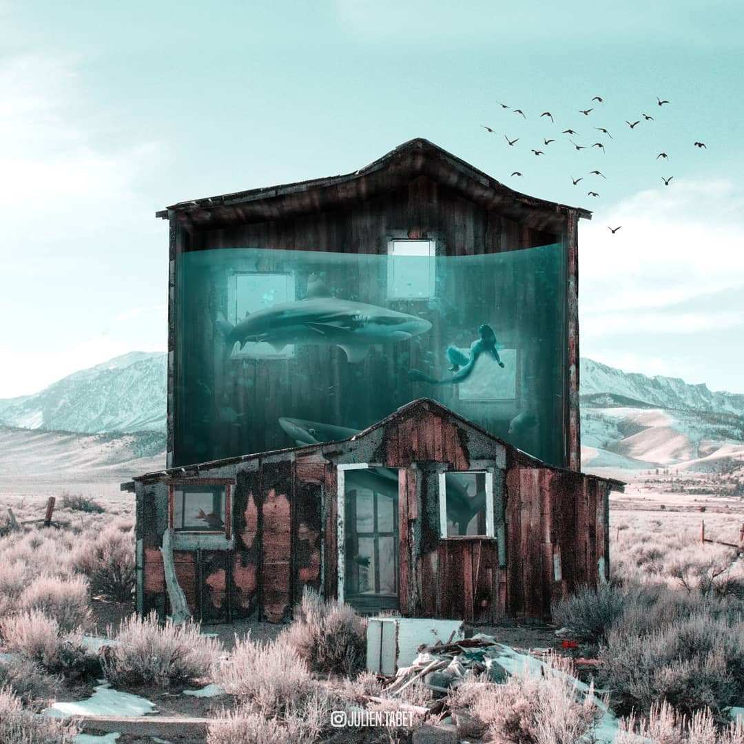 aquahouse photoshop animal photo manipulation by julien tabet