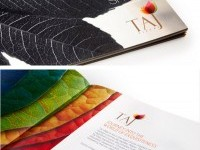 11-taj-villas-beautiful-brochure-design