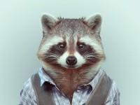 20-animal-portrait-photography