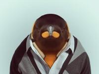 21-animal-portrait-photography