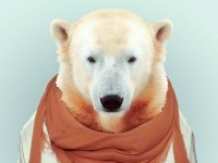 33-animal-portrait-photography