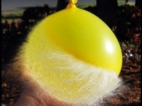 6-baloon-popped-high-speed-photography