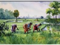 19-watercolor-paintings-by-balakrishnan