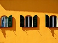 20-best-yellow-themed-photography