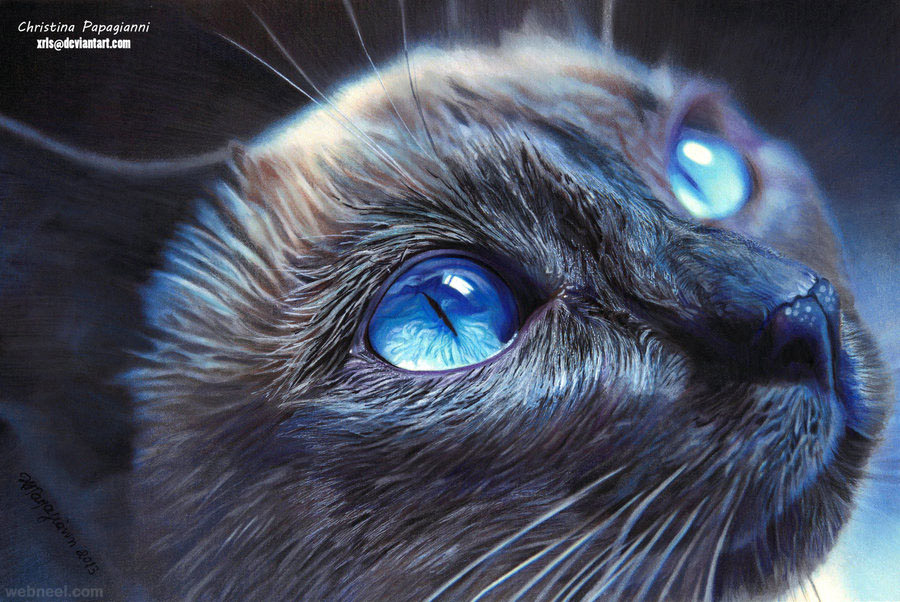 Cat Hyper Realistic Color Pencil Drawing By Christina Papagianni 21