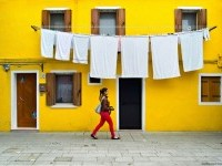 7-best-yellow-themed-photography