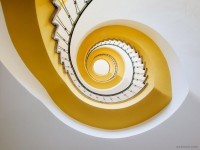 8-best-yellow-themed-photography