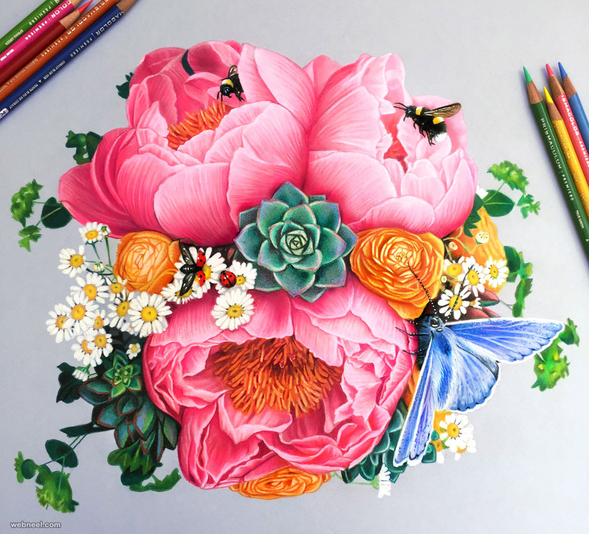 flowers color pencil drawing