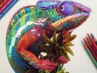 2-chameleon-color-pencil-drawing-by-morgan-davidson