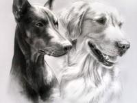 8-dog-drawing-by-gwyneeth