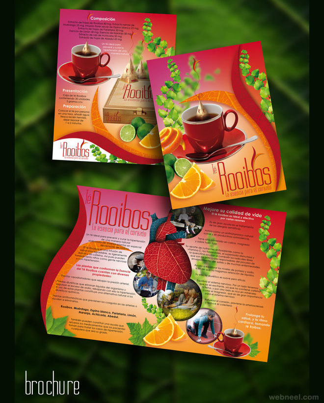 brochure design by creatunco