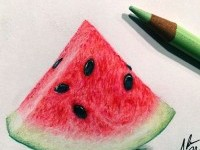 water-melon-color-pencil-drawing-by-adampadilla
