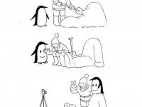 12-penguin-funny-drawings-by-shanghai-tango copy