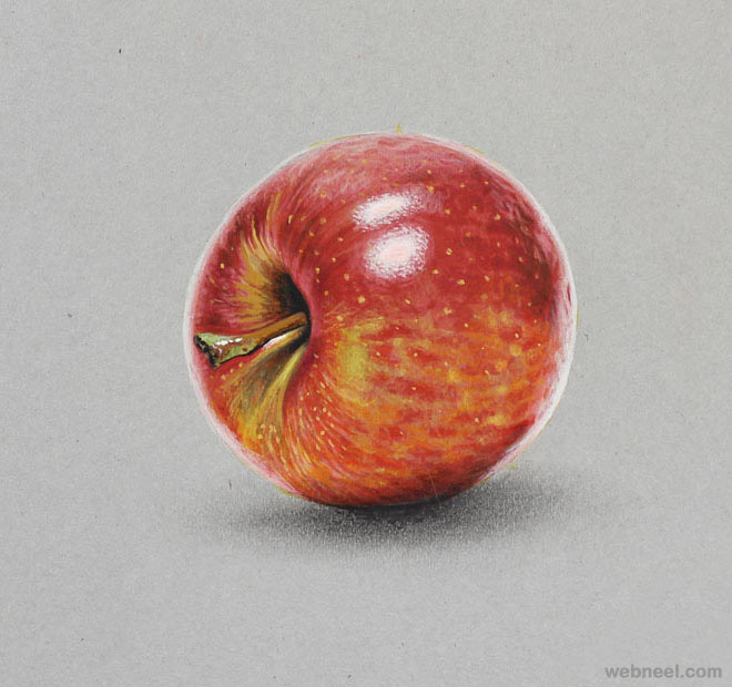 Apple Realistic Drawing By Marcello Barenghi 12