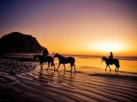 18-best-silhouette-photography