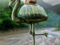 28-turtle-flamingo-photo-manipulation-nenad-marinkovic